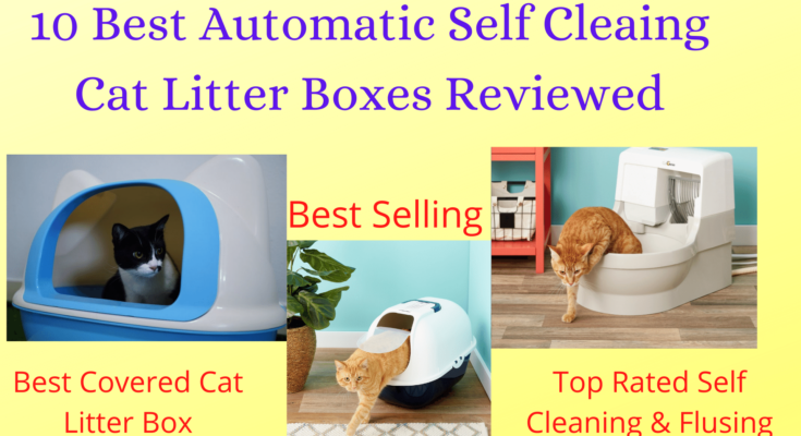 Best Self Cleaning Automatic Cat Litter Boxes