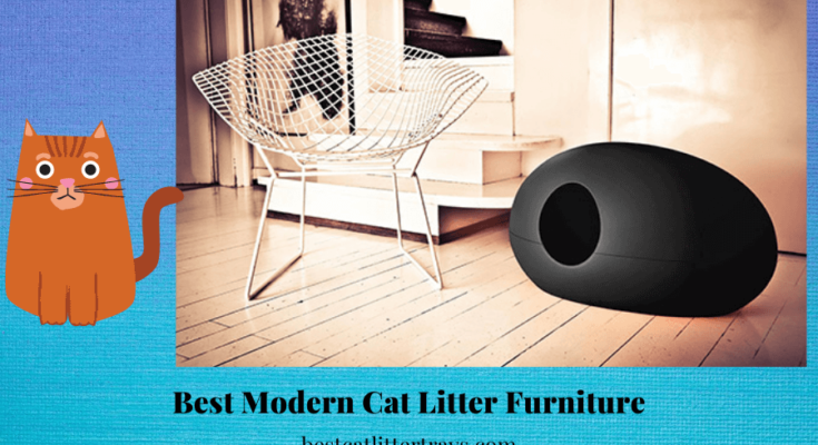 Best Modern Cat Litter Furniture