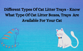 Types Of Cat Litter Boxes
